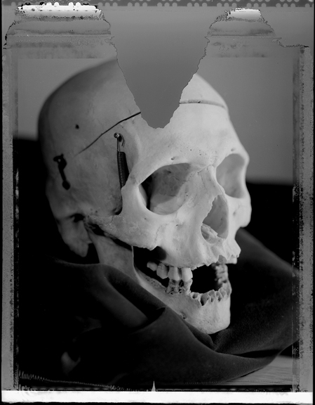 Not Del Close Skull,  Goodman Theater Chicago